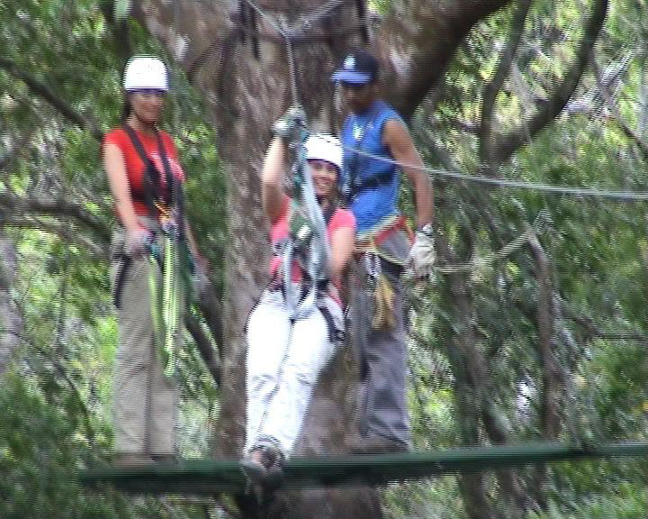 Canopy in Rincon de la Vieja