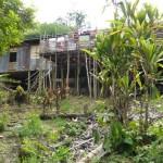 Iban en Iban Longhouses