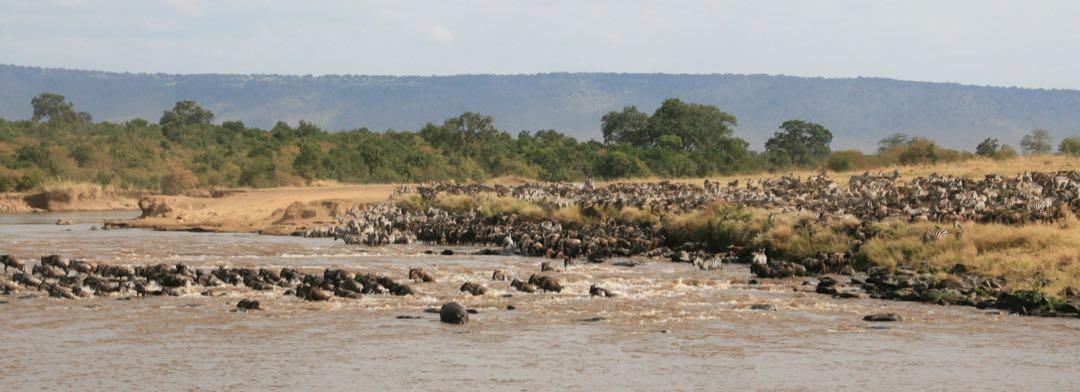 Oversteek Mara rivier